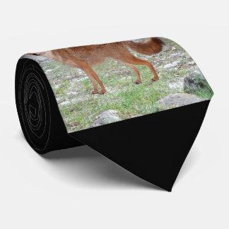 Coyote (South Dakota) Tie