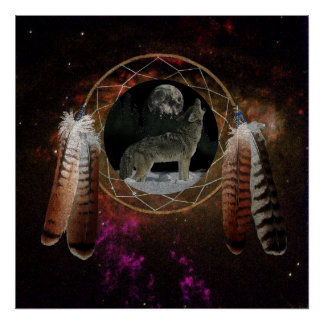Coyote Spirit Poster