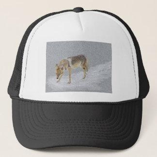 Coyote Trucker Hat