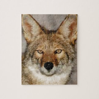 coyote up close jigsaw puzzle