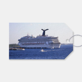 Cozumel Cruise Ship Visit Custom Pack Of Gift Tags