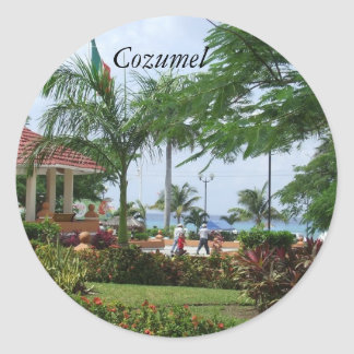 Cozumel Tropical Palm Tree Stickers