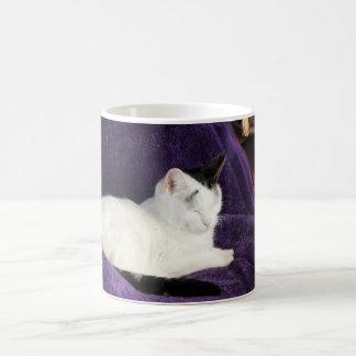 Cozy Cat Kitty Napping Happy Coffee Mug