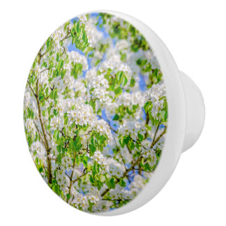 Crab apple blossom ceramic knob