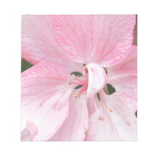 Crab Apple Blossom Close Up Notepad