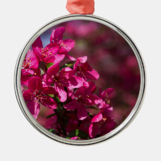 Crab Apple Shadows Silver-Colored Round Ornament