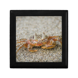 Crab claws gift box