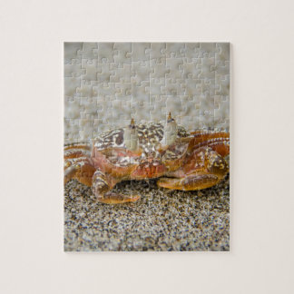 Crab claws jigsaw puzzle