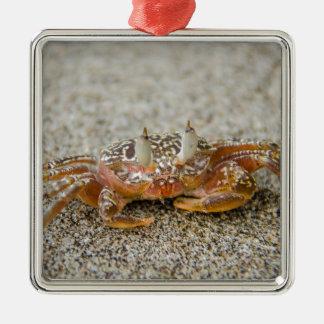 Crab claws metal ornament