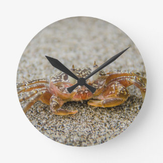 Crab claws round clock