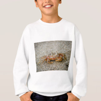 Crab claws sweatshirt