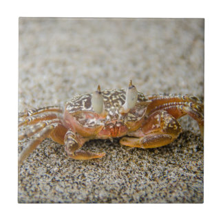 Crab claws tile