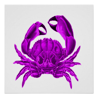Crab in purple / ultraviolet poster