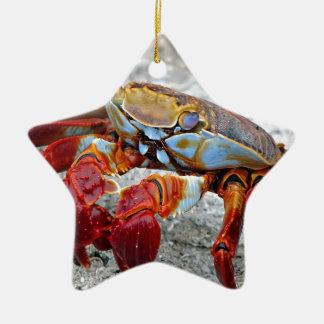 Crab photo ceramic star ornament