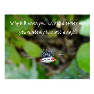 Crab Spider Postcard / Funny Ninja Quote