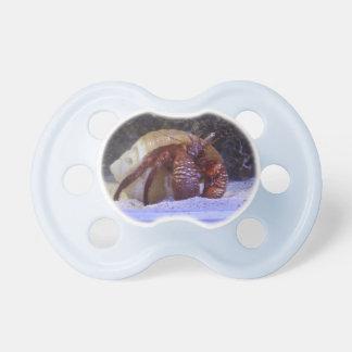 crabby binky pacifier BooginHead pacifier