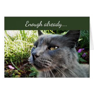 Crabby Cat with Funny Expression Note Card