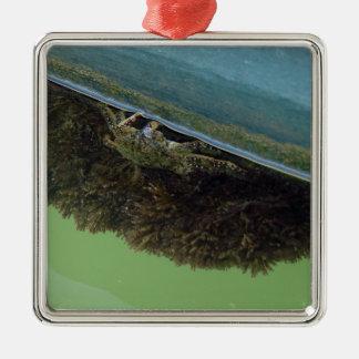 Crabby Silver-Colored Square Ornament