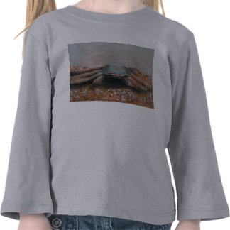 CRABBY Toddler Long Sleeve T Shirt