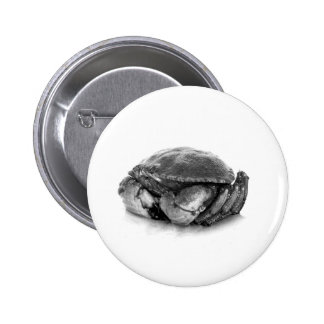 Crabe de roche de la Nouvelle Angleterre II Badge