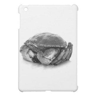 Crabe de roche de la Nouvelle Angleterre II Coques Pour iPad Mini