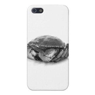 Crabe de roche de la Nouvelle Angleterre II Étuis iPhone 5