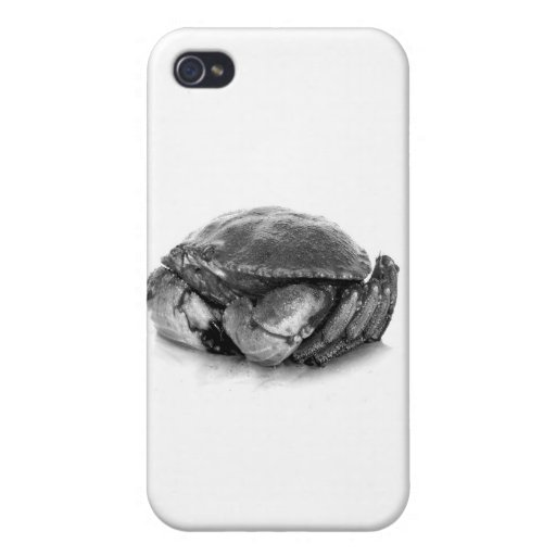 Crabe de roche de la Nouvelle Angleterre II Étui iPhone 4