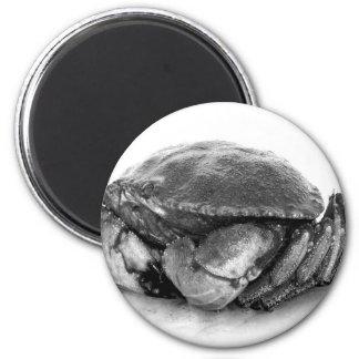 Crabe de roche de la Nouvelle Angleterre II Magnet Rond 8 Cm
