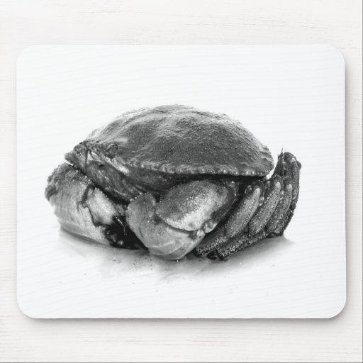 Crabe de roche de la Nouvelle Angleterre II Tapis De Souris