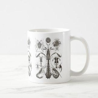 Crabs, Lobster, & Shrimps Coffee Mug
