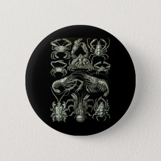 Crabs & Lobsters 2 Inch Round Button