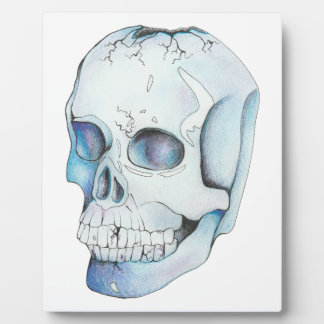 Cracked Crystal Skull Plaque