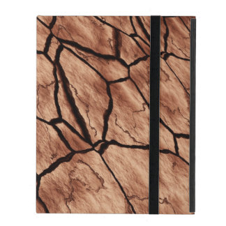 Cracked Earth iPad Folio Case