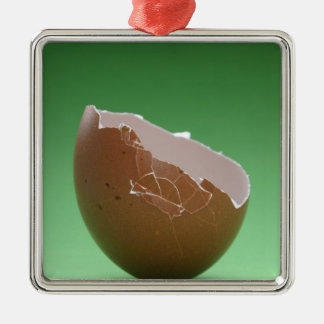 Cracked Egg Shell Silver-Colored Square Ornament