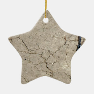 cracked insect ceramic star ornament