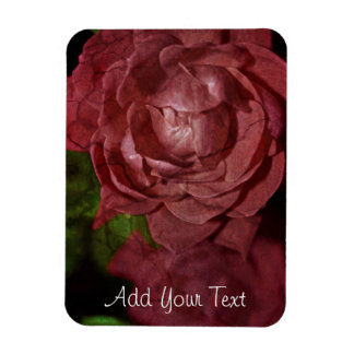 Cracked Red Rose by Shirley Taylor Rectangular Photo Magnet
