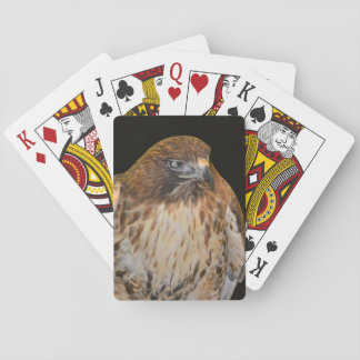 Crafty Hawk Poker Deck