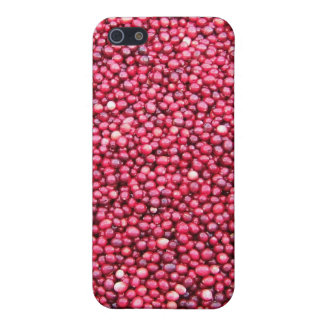 Cranberries iPhone 5/5S Covers