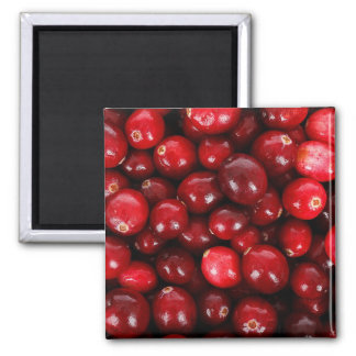 Cranberries Magnet
