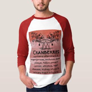 cranberries mens shirt