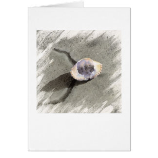 Crane Beach Crab Shell Card