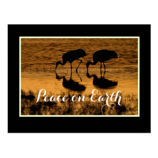 Cranes and Peace on Earth with border Postcard