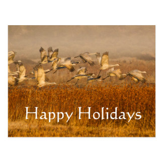 Cranes over golden field, Happy Holidays Postcard