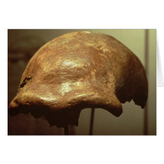 Cranium of a Neanderthal Card