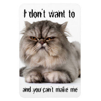 "Cranky kitty flexible magnet, ""I don't want to..."" Rectangular Photo Magnet"