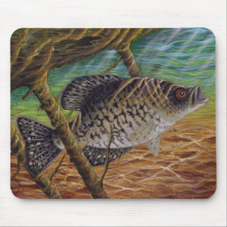 crappie mouse pad