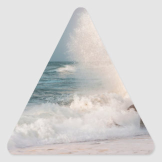 Crashing wave triangle sticker