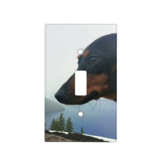 Crater Lake Light Switch Cover