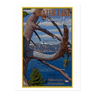 Crater Lake - Summer 2011 Postcard