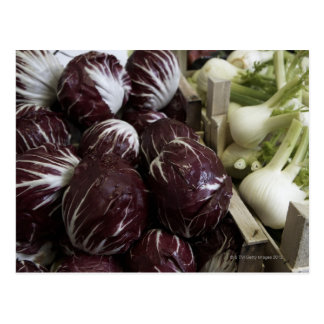 Crates of red cabbages and fennel postcard